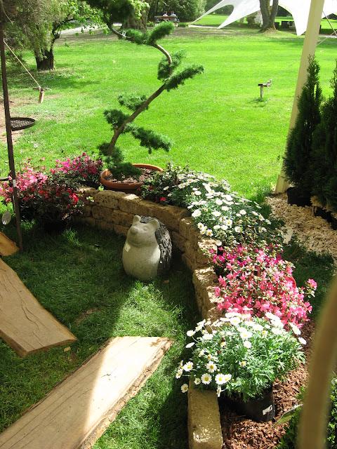 Arboretum lubiana turisti a ogni costo for Abbellire il giardino