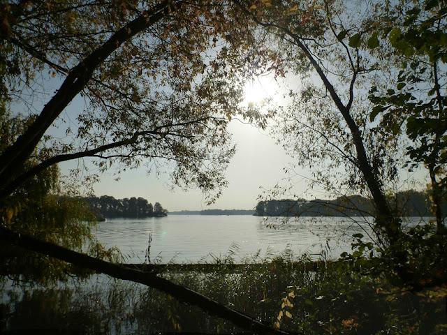 Kurz vor Sonnenuntergang: Blick auf einen See durch Bäume hindurch, an denen nur noch wenige Blätter hängen. Im Hintergrund die Baumlinien des Ufers.