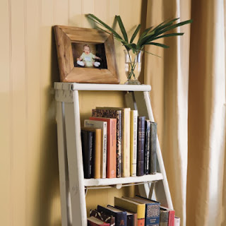 Stepladder Shelves
