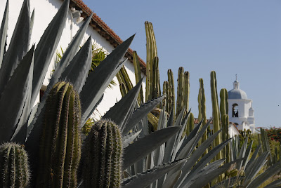 mission san luis rey with surrounding cactus