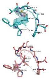 senyawa porphyrin