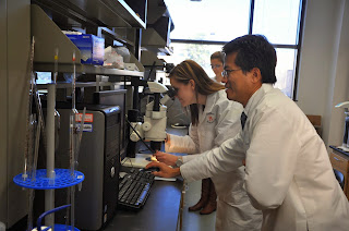 Dr Jorn Yu works with students in the SHSU forensic lab.