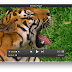 تحميل برنامج Elmedia Player لأعمال الفيديو المختلفة