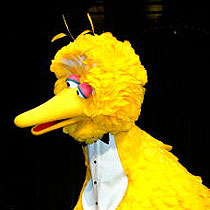 Most Popular Sesame Street Characters big bird