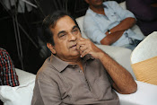Geethanjali Success meet-thumbnail-20