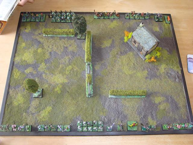 El fin de warhammer fantasy DSC07751