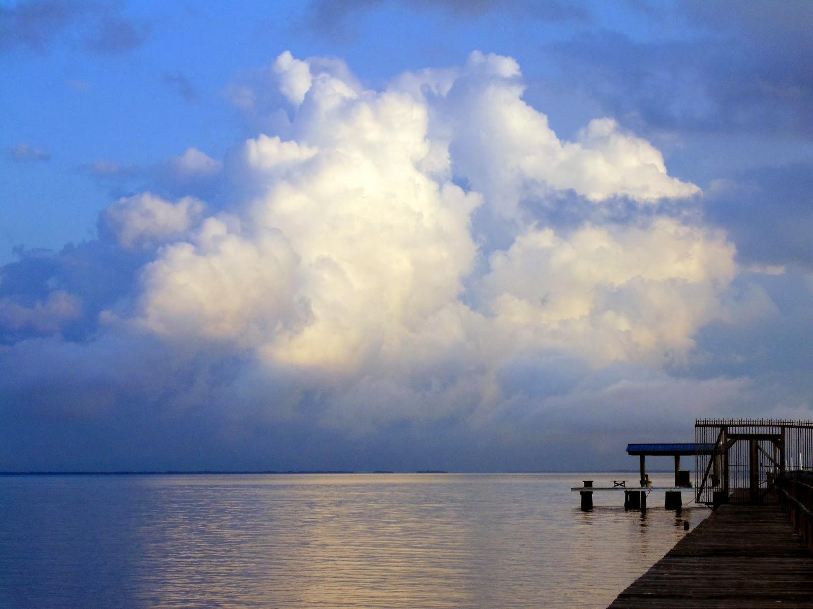 Pine island florida blueway festival this weekend for Bokeelia fishing pier