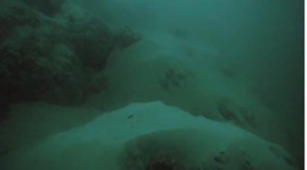 dasar laut mati