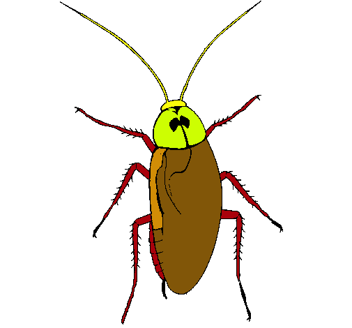 La cucaracha del cuento de la mariquita