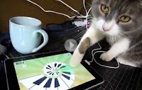 Gato brincando com jogos para iPad