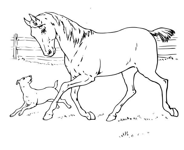 Silueta de caballo corriendo para colorear - Imagui