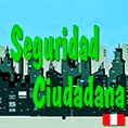 Seguridad Ciudadana