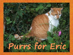 Purrs for my friend Eric