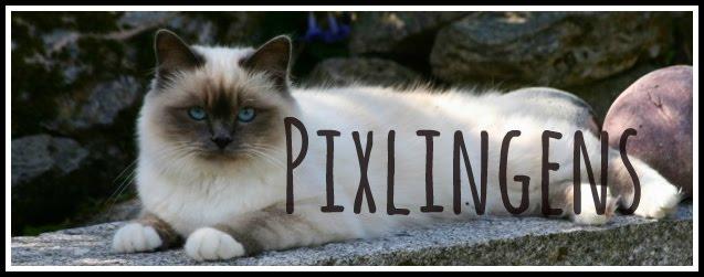 Pixlingens