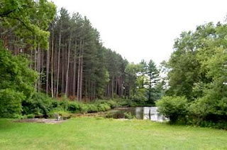 Delaware Water Gap National Recreation Area (Best Honeymoon Destinations In USA) 4