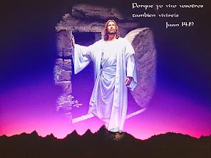 Aleluya, Cristo ha resucitado !!