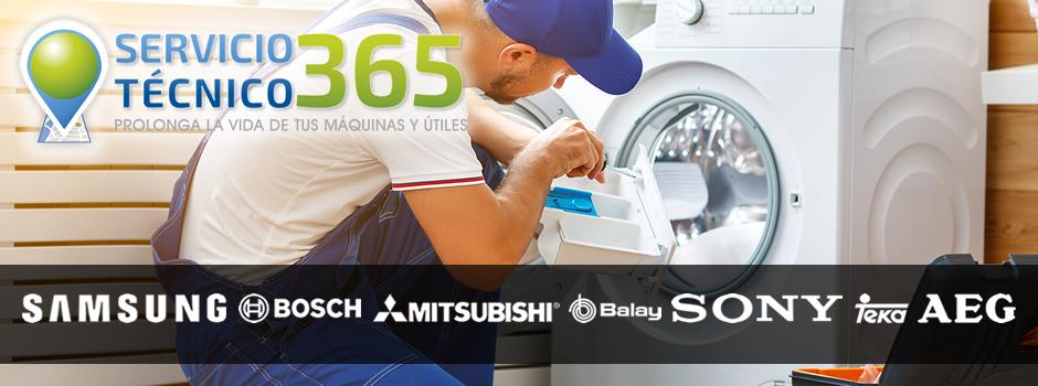 Servicio Técnico 365
