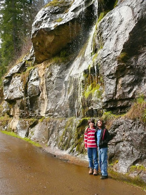 Oregon, Lane County, Siuslaw River, Coast Range, Old Stagecoach Road