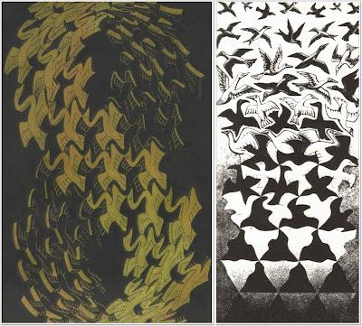 birds coincidence
