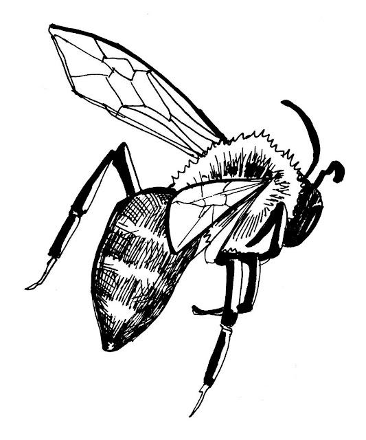 Ilustração, Patrik Caetano, Let it bee, Editorial, Trend me too