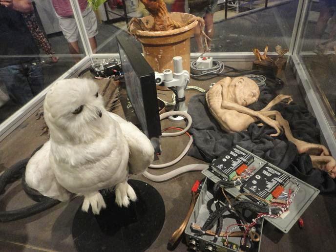 Hedwiges - Visitando os Estúdios de Harry Potter em Londres