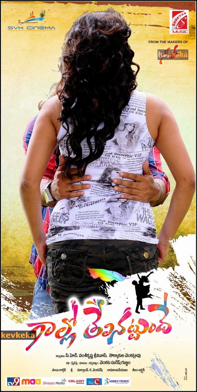 Watch Gaallo Telinattunde (2014) Telugu DVDScr Full Movie Watch Online Free Download