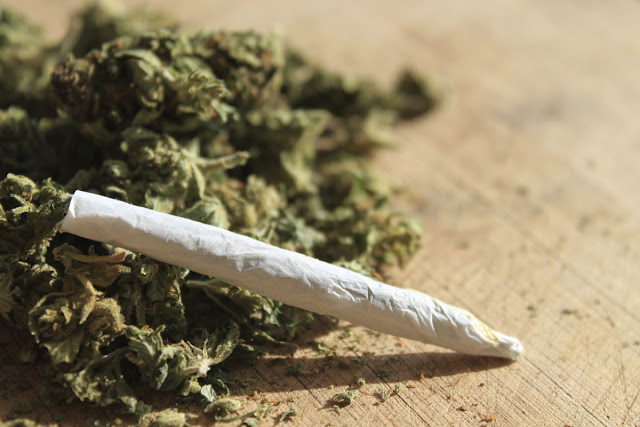 Scientists Say Cannabis Can Help Heal Broken Bones