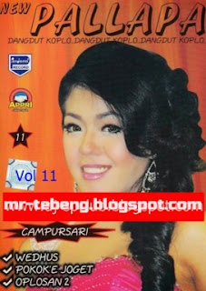 Album New Pallapa Campursari Vol 11