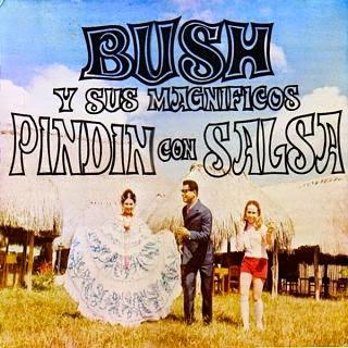 bush magnificos pindin salsa