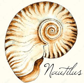 GABINETE DE HISTORIA NATURAL - NAUTILUS
