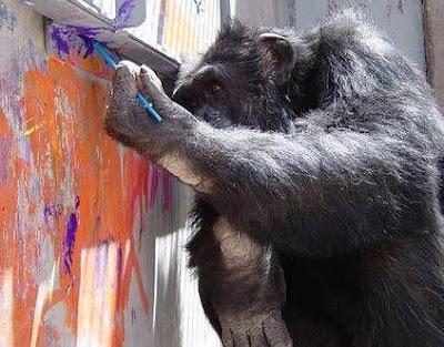 شمبانزي يرسم لوحات سعر الواحدة 150 ألف دولار