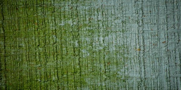 28 Dirty Grunge Wall Textures Backgrounds Pack