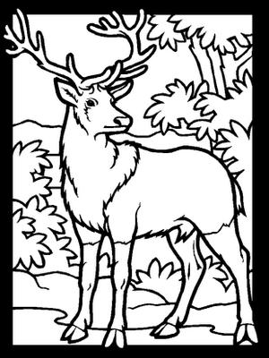 Mewarnai gambar tema animal