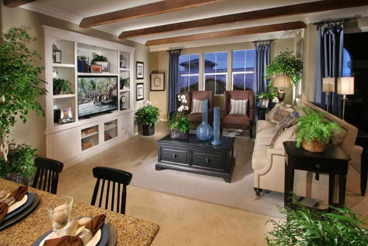 Luxury Living Rooms With Tv