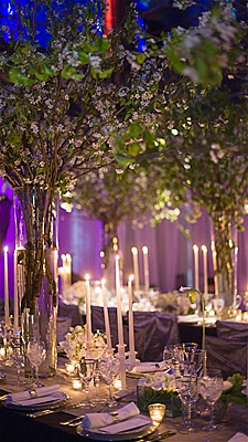 Castle manor winter wedding trends for Most beautiful wedding decorations