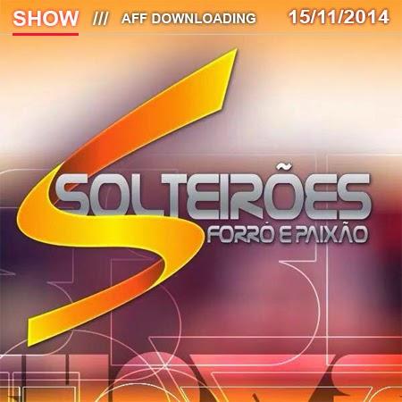 Solteirões do Forró - Várzea Alegre - CE - 15.11.2014
