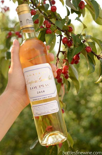 Chateau Loupiac-Gaudiet Loupiac wine and food pairing