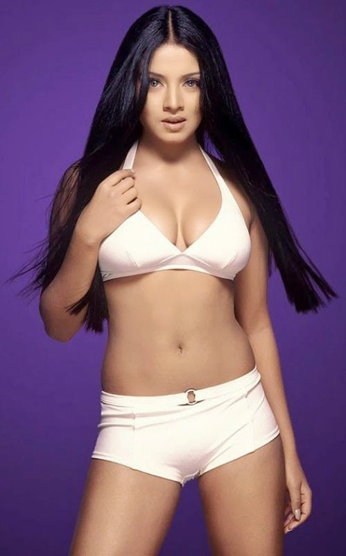 Celina Jaitly-Bollywood-Bollywood actress-Bollywood celeb