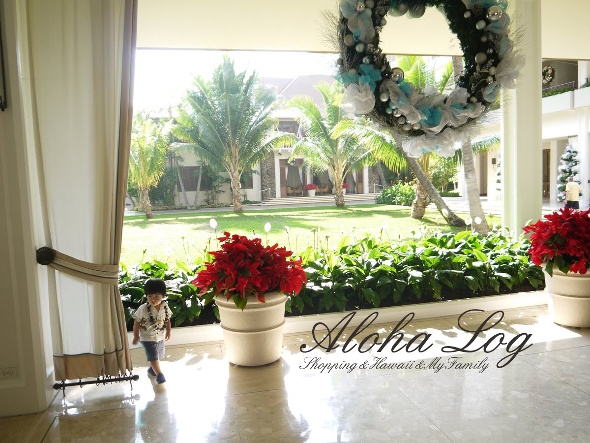Aloha Log*Hawaii*