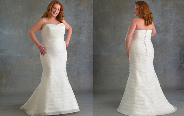 Plus Size Wedding Dresses Tips and Picture