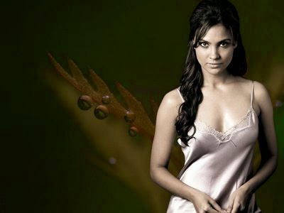 Lara Dutta Showing Nude and Boobs