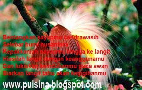 Puisi Motivasi Coretan Cakar Cendrawasih
