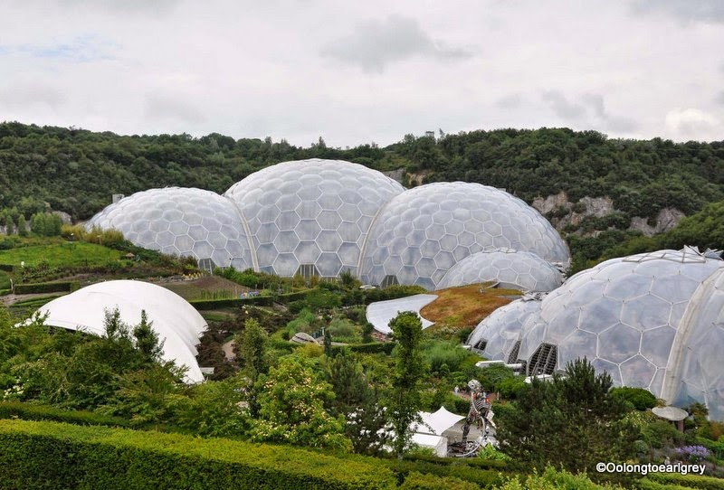 Biomes, The Eden Project, Cornwall, UK