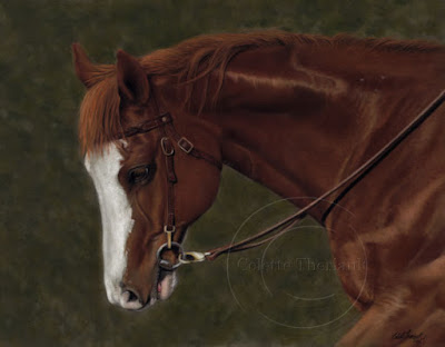 Appaloosa Horse Painting in Pastel by Colette Theriault