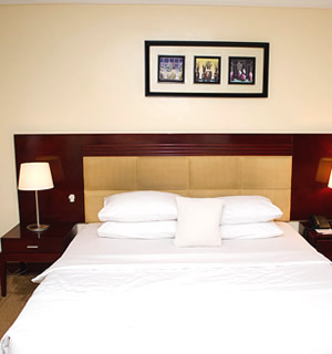 Check-Inn Hotels Executive Suite