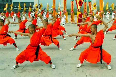 seni beladiri kung fu 2