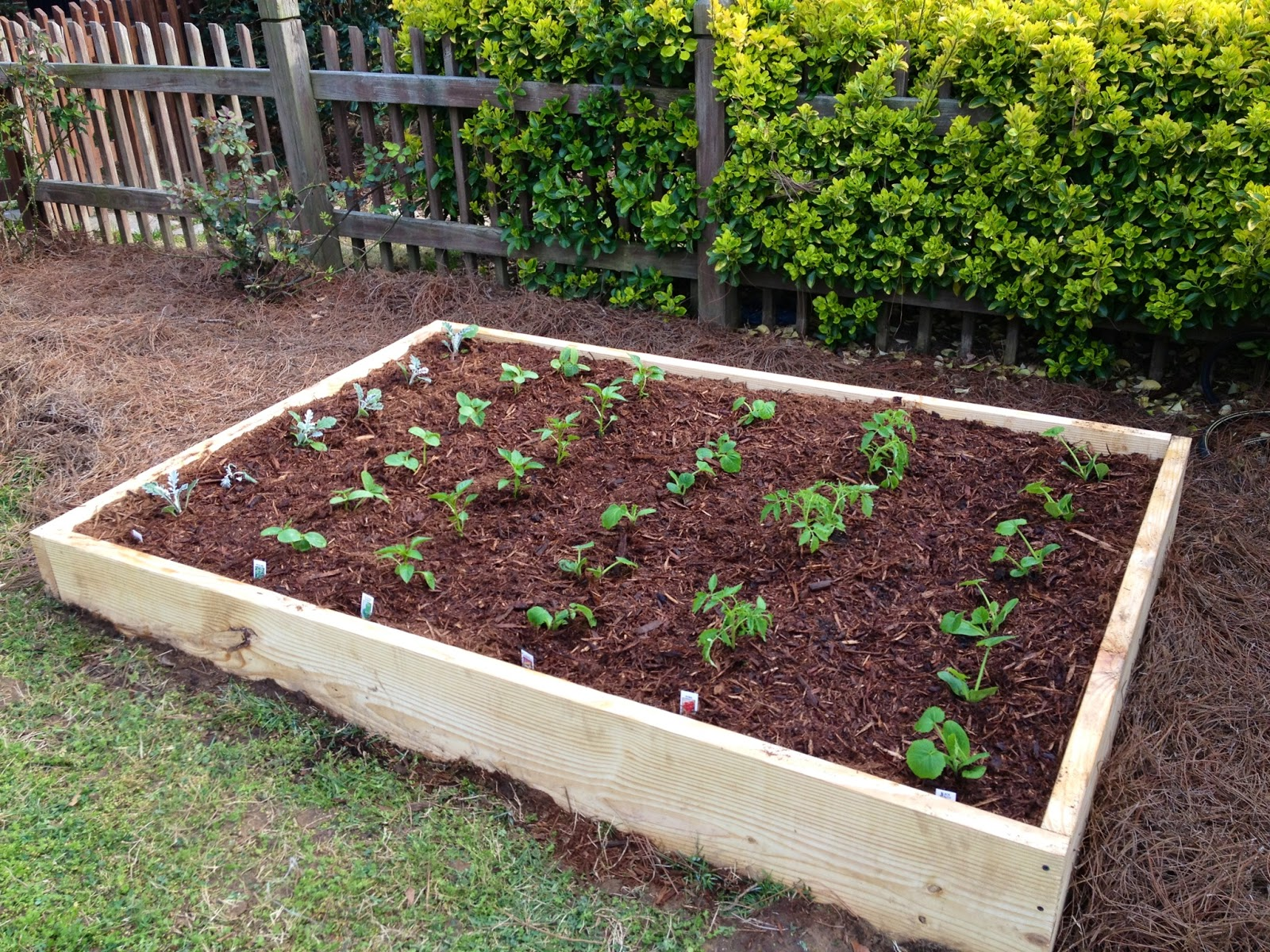Not so newlywed mcgees diy raised garden bed for Diy patio bed