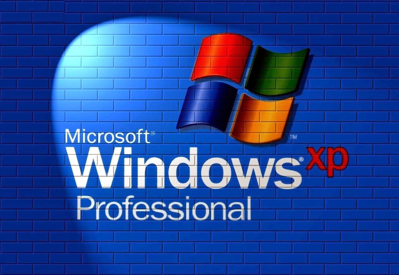 windows xp professional serial