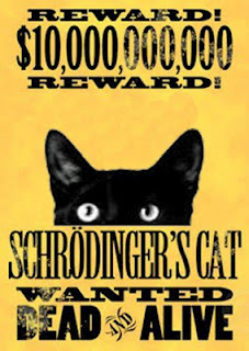 schrodinger's alive
