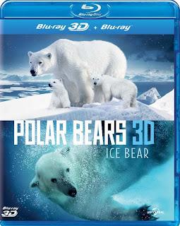 Gấu Bắc Cực: Cuộc Phiêu Lưu Mùa Hè - Polar Bears: A Summer Odyssey